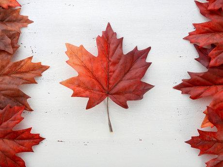 Canadian Travel Advice