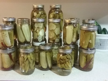 Vegetable canning/ pickling