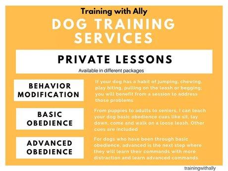 30 Minute Dog Training Advice