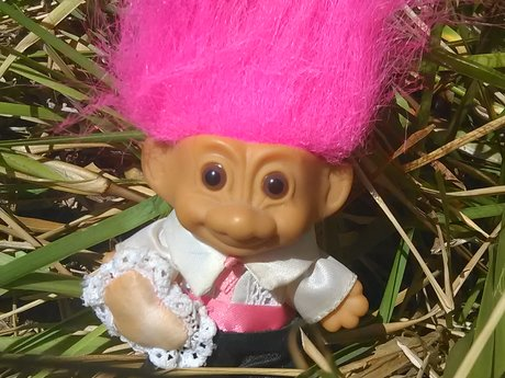 Wedding Guest Troll (little guy)