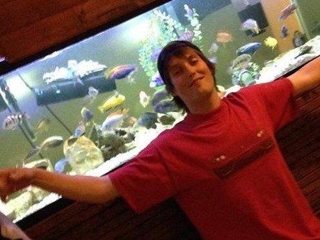 Cichlid Keeping / New to Aquariums