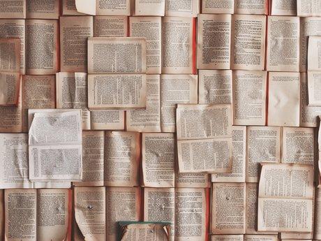 Fiction Critique