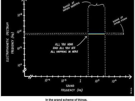 Science & Engineering Advice