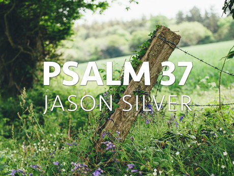 Psalm 37 Put to Music