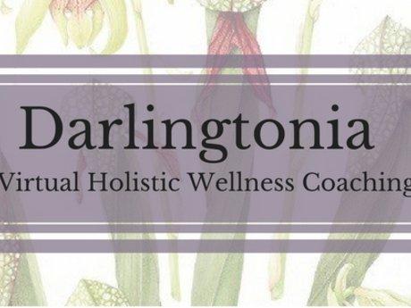 30min  Holistic Wellness Consult!