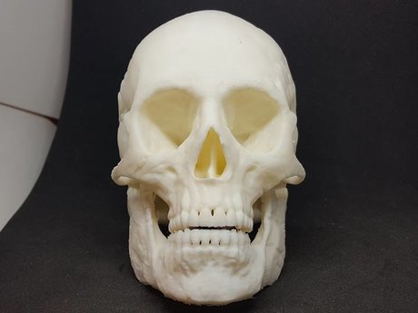 3D Printing Services for Barbara