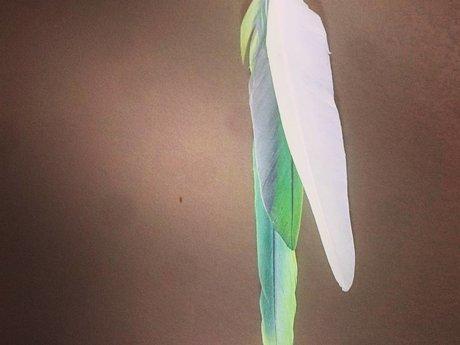 Feather Phone Charm