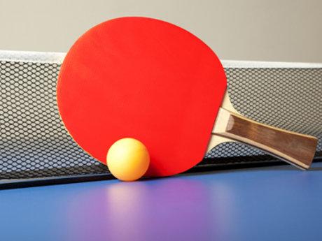 Ping Pong Partner