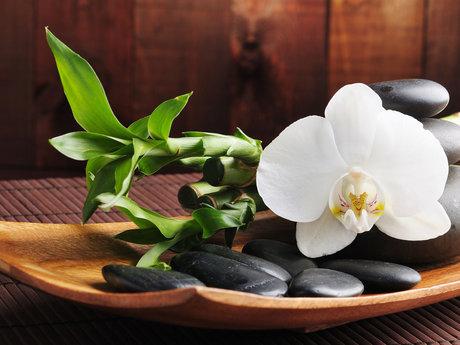 Esthetician /day spa