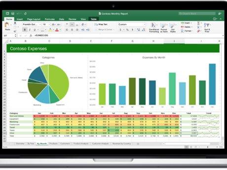 Custom Excel-based Solutions.