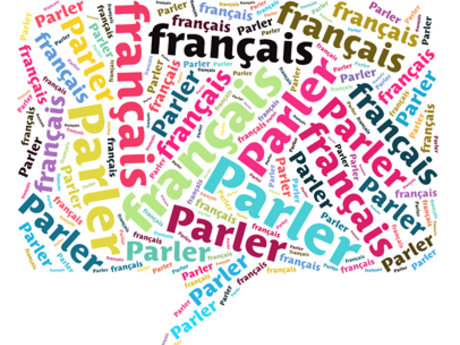 Learn or improve your French!
