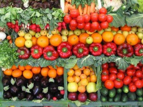Horticultural Consultation