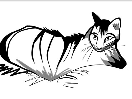 Digital Drawing of your pet!