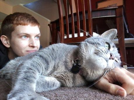 Cat Behavior Consultation