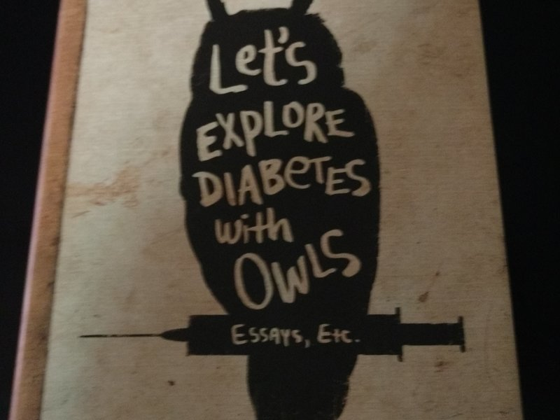 Thesis For A Narrative Essay Hard Cover Copy Of David Sedaris Essays Lets Explore Diabetes With Owls  Sedaris Is One Funny Guyyou Will Love His Insight And Wit High School Persuasive Essay also Good Thesis Statements For Essays David Sedaris Hard Cover  Jeff Kurtz  Simbi Examples Of Persuasive Essays For High School