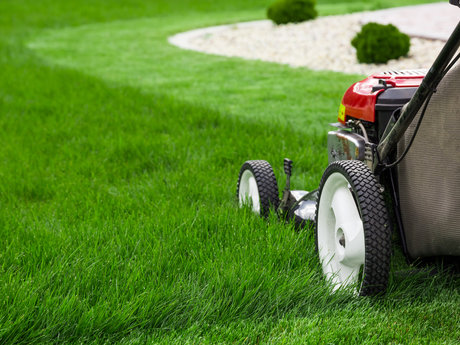 Mown your lawn once with your mower