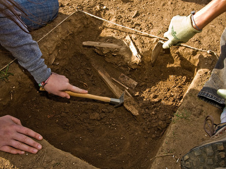 I will be you archaeologist.