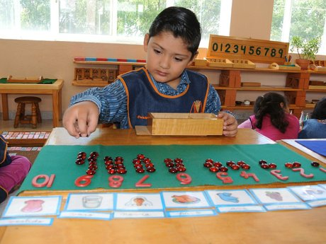 Montessori tutor for 3-9 year-olds
