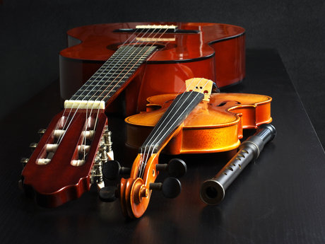 Violin/Guitar/Music Writing Lessons