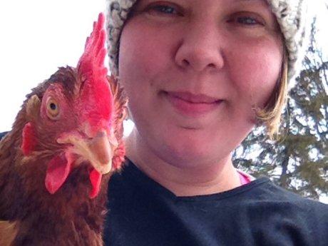 Chicken Keeping Advice