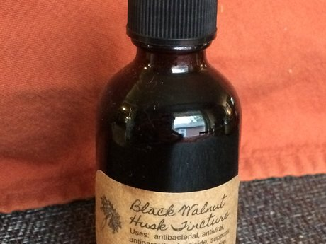 Black Walnut Husk Tincture AntiBact