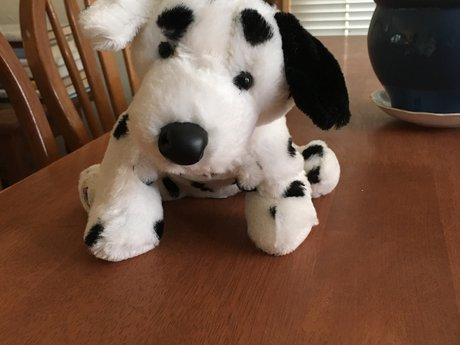 Dalmation Puppy Plush Pet