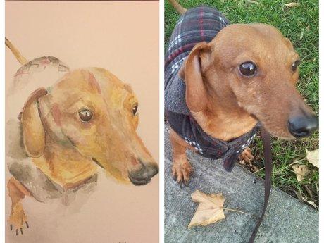 Original Pet Portrait in Watercolor