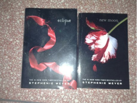 Eclipse/New Moon - Twilight Series