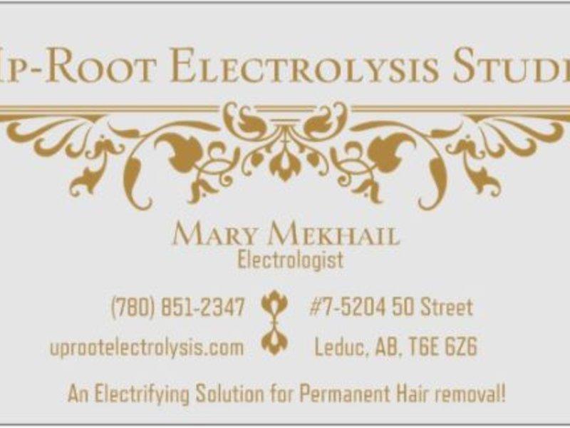 15-Minutes Electrolysis Treatment - Mary Mekhail - Simbi