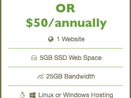 One Month of  Web Hosting