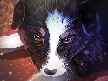 I can draw a portrait of your pet!