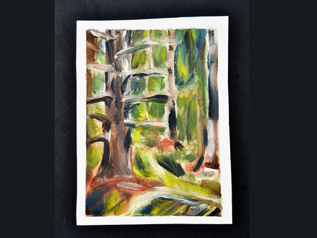 Cathedral woods 5.5X7.5 inches