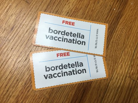 Petco Bordetella Vaccination coupon