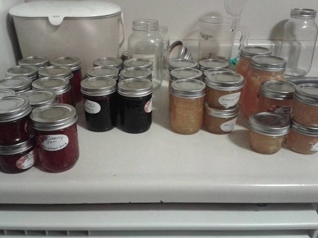 Large Batch of Homemade Jam (Local)