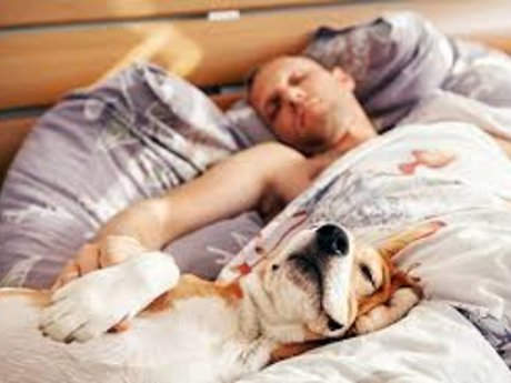 18 Natural Sleep Aids
