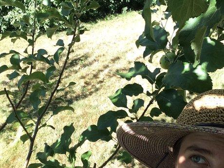 Gardening artist