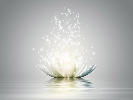 Reiki healing/Coaching, Herbalist