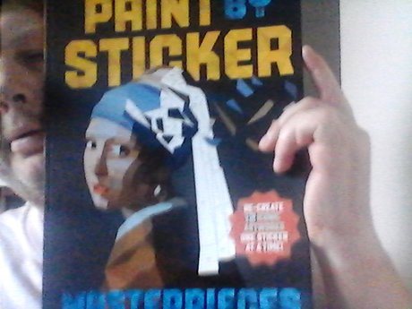 paint by sticker 12 iconic artworks