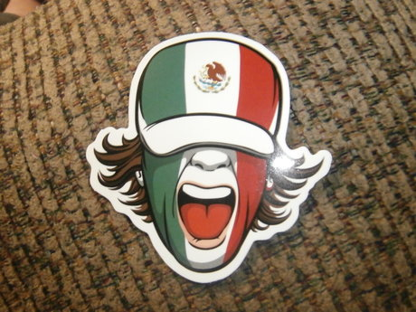 Mexican flag face sticker