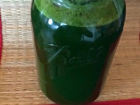 Grasshopper Juice