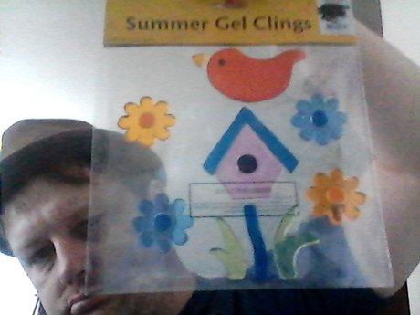 Summer Gel clings for windows