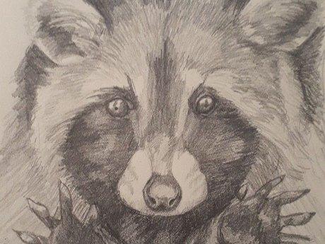 Drawing pencil 385x255mm