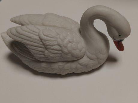 3 lovely swans