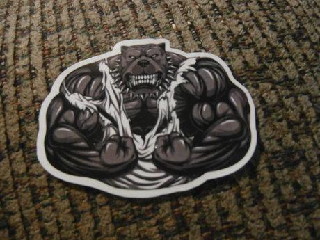 Mean Pitbull Sticker