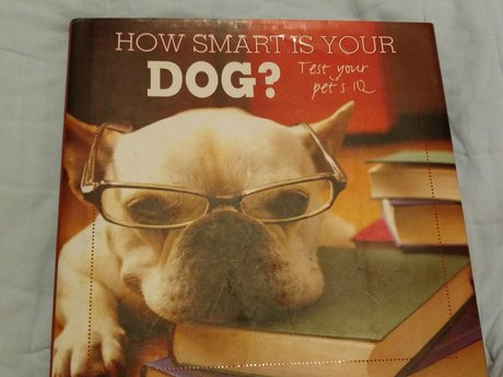 New How Smart is Your Dog book