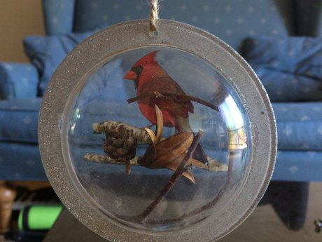 Pretty cardinal decoration