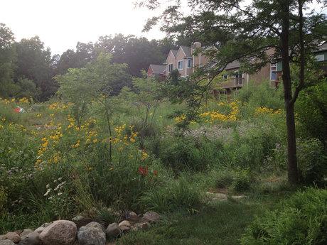 Overnight stay in Ann Arbor