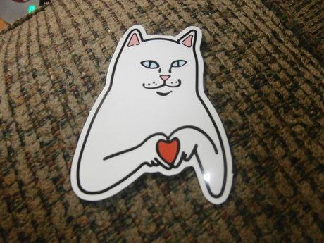 Anime Love Cat sticker