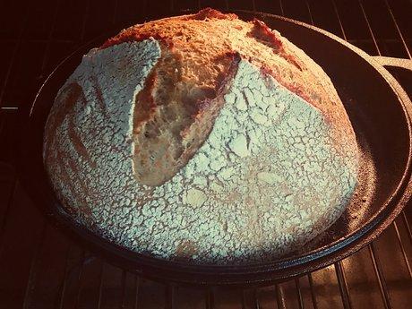 Sourdough Bread 101