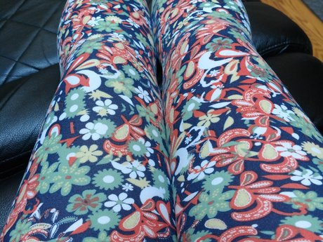 LuLaRoe OS Leggings - Gently Used